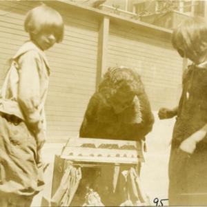 VIIs_Shop_1922-23.jpg